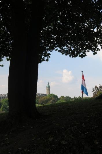 flag_tree